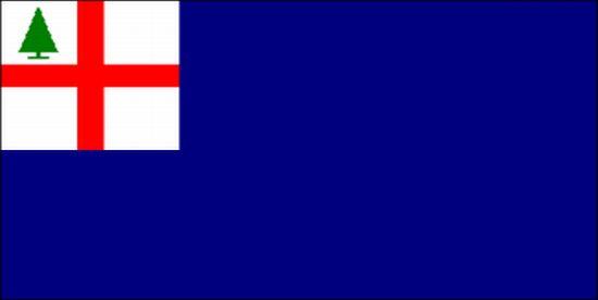 Bunker Hill Nylon Flag
