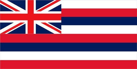 Hawaii Nylon Flag