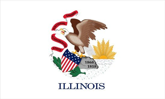 Illinois Nylon Flag