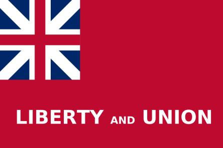 Taunton Nylon Flag