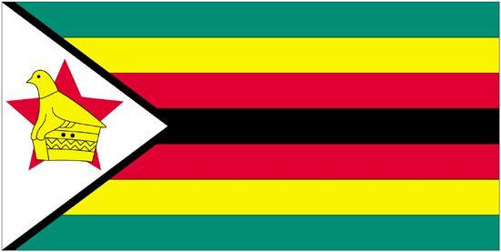 Zimbabwe Nylon Flag