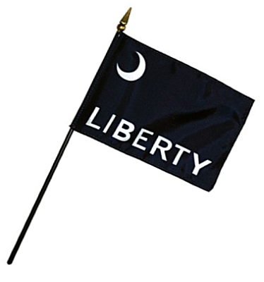 Fort Moultrie Rayon Stick Flag