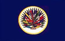 Organization of American States Nylon Flag