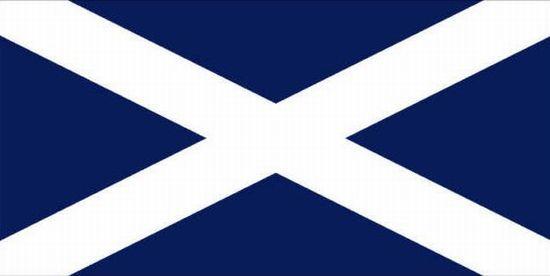 Saint Andrews Cross Nylon Flag