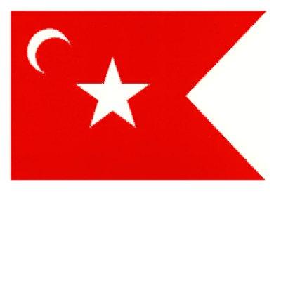 South Carolina Secession Flag