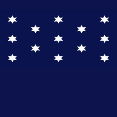 Washington's Commander-in-Chief Flag